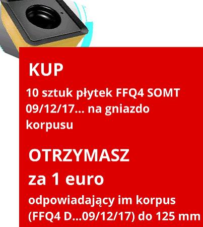 FFQ4 SOMT
